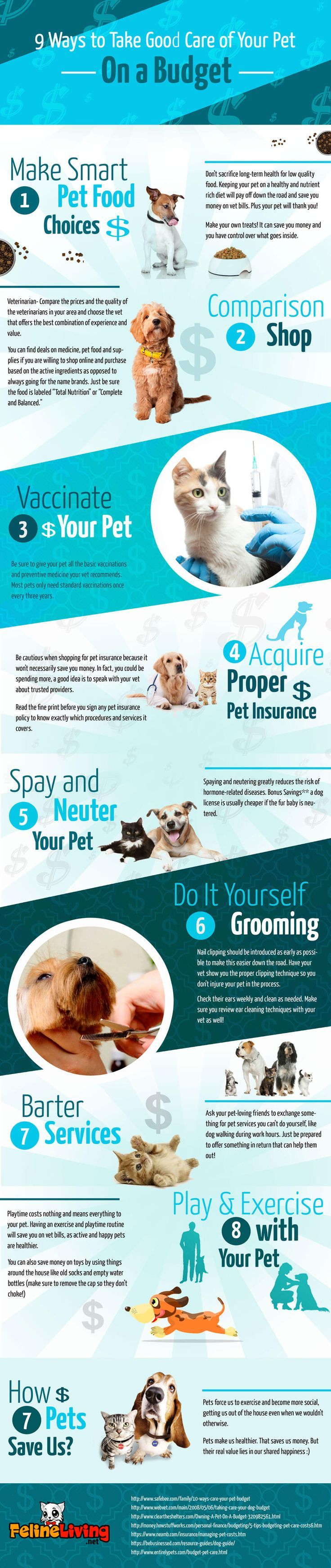 9 Ways To Take A Good Care Of Your Pet On A Budget Felineliving Net Pet Care Pets Cheap Pets