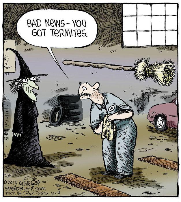 Halloween Humor   Google Søgning