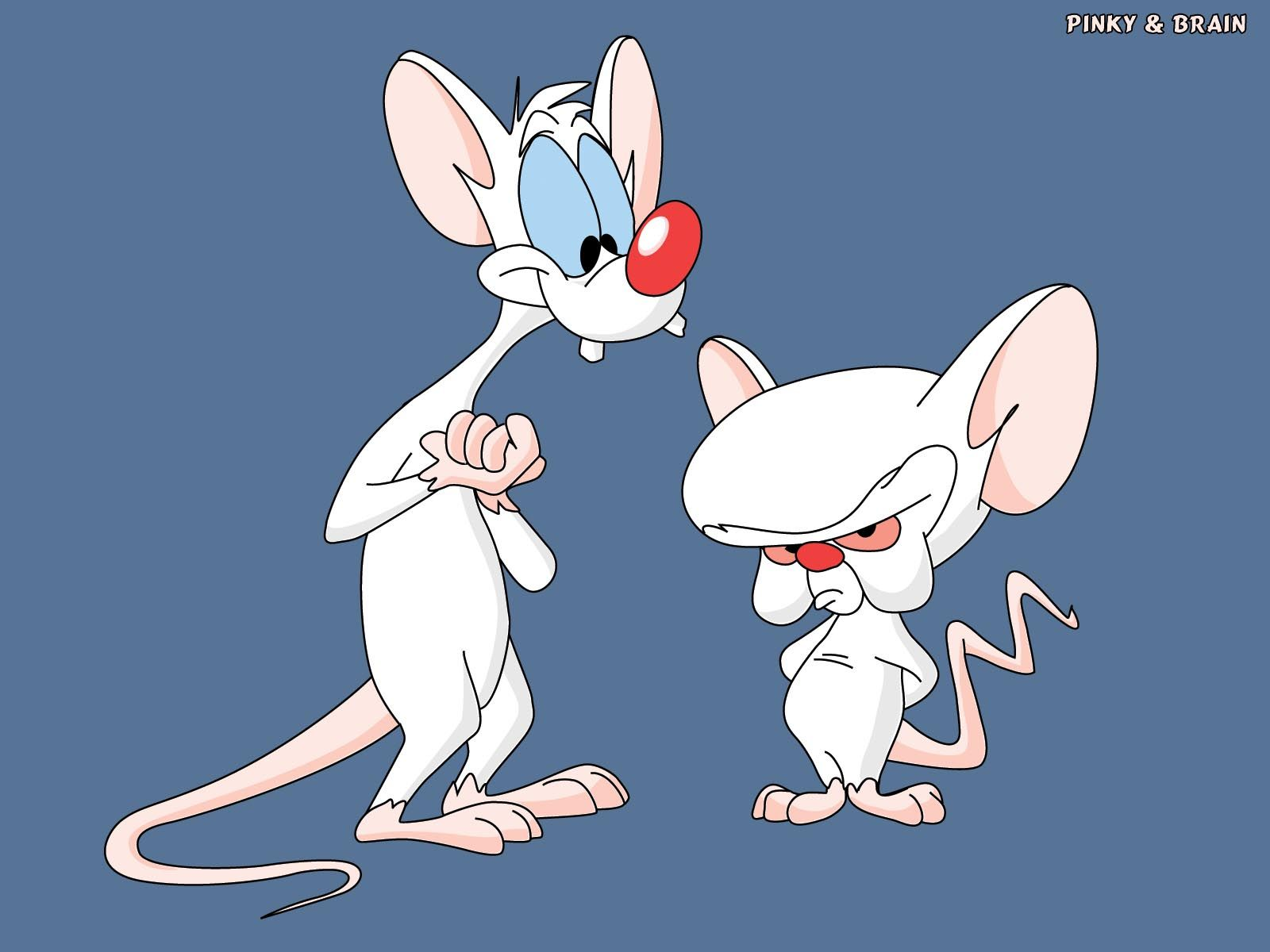 They Re Pinky And The Brain Its Pinky And The Brain One Is A