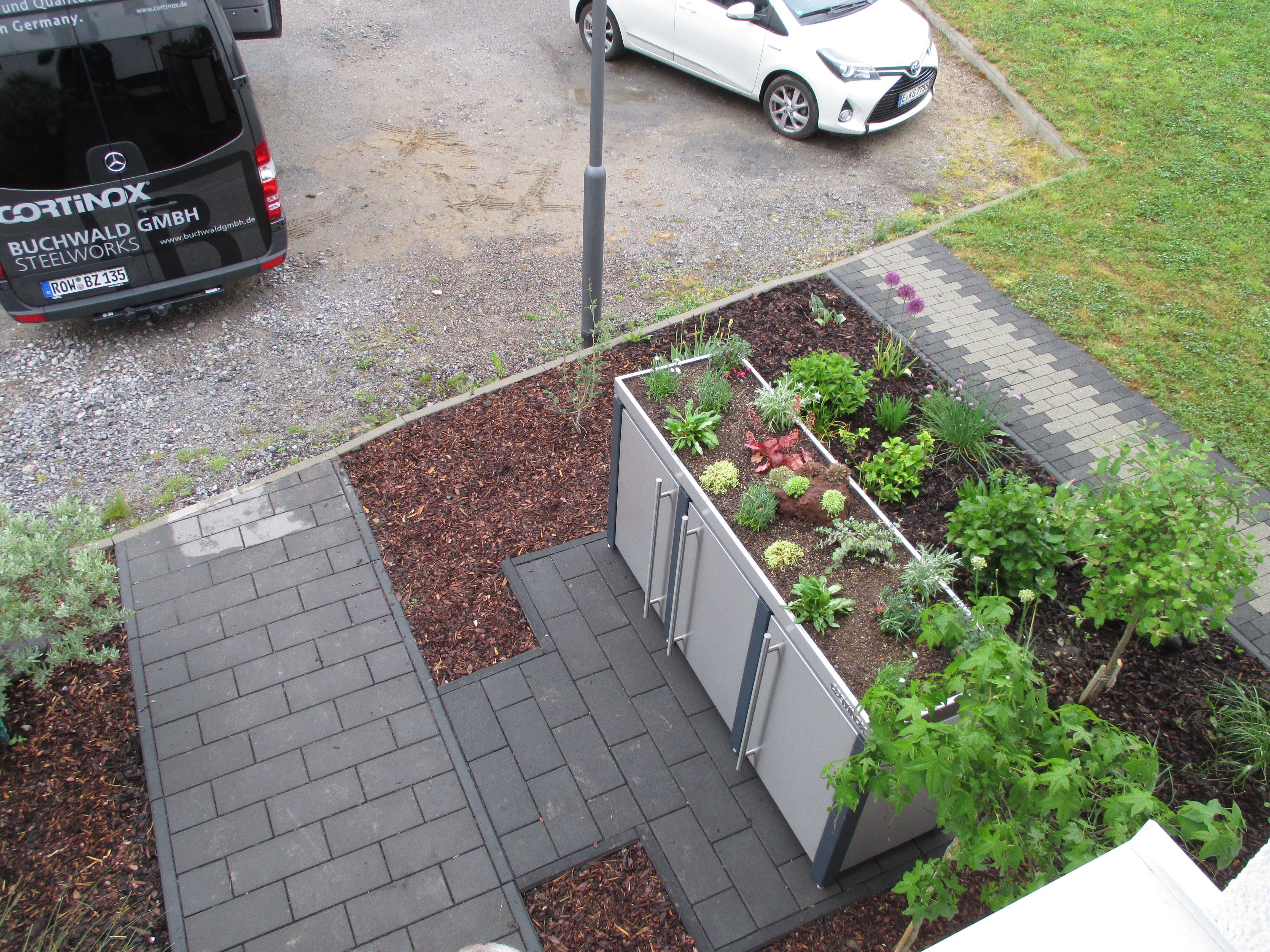 harmonisches miteinander bepflanzung auf der m lltonnenbox von cortinox und im vorgarten. Black Bedroom Furniture Sets. Home Design Ideas