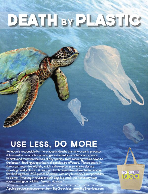 Pollution in our oceans is a growing problem in our society. So many of our storm drains end up leading to the ocean and when we litter, we don't realize that we are indirectly killing innocent animals that are crucial to our ecosystem.