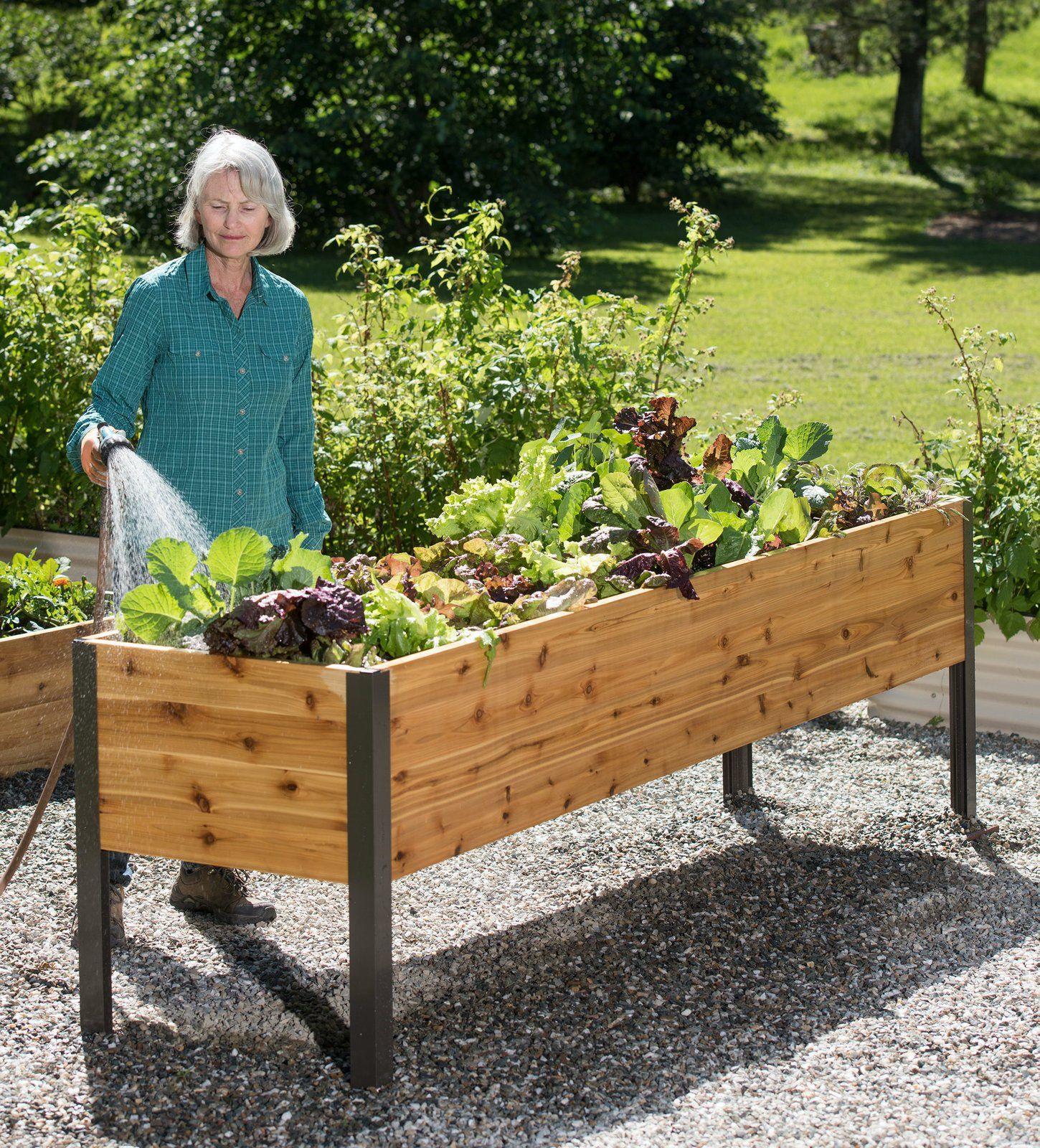 Gardener S Supply Company 2 X 8 Elevated Cedar Planter Box By