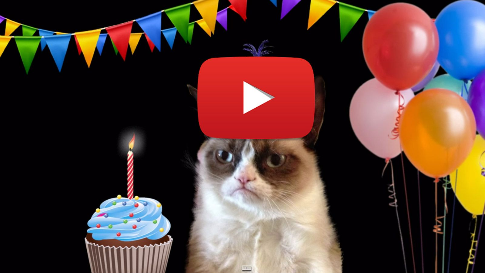 Happy Birthday Song by Grumpy Cat http//greetingsday
