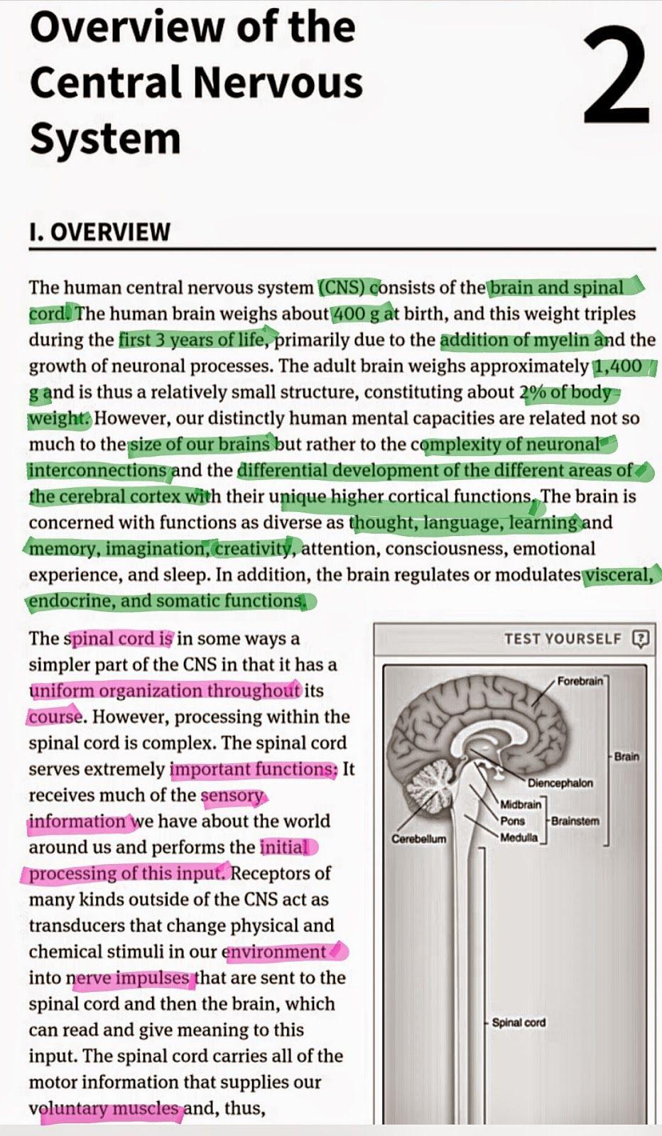 Medical knowledge textbooks anatomy, physiology, neuroscience ...