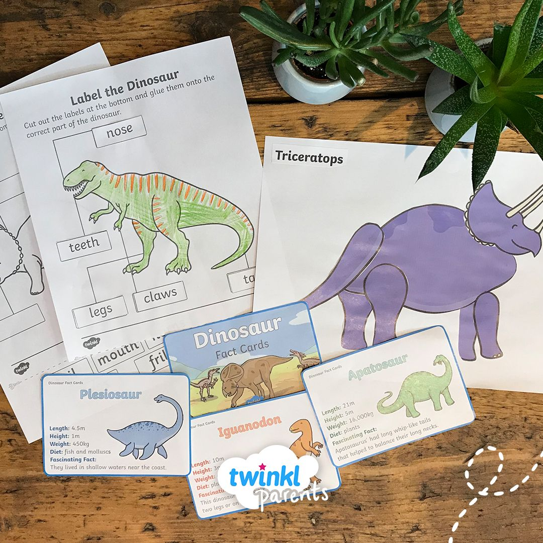A Fun Activity Allowing Your Children To Make Their Own
