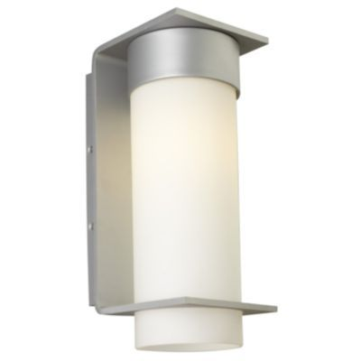Palm lane outdoor wall sconce