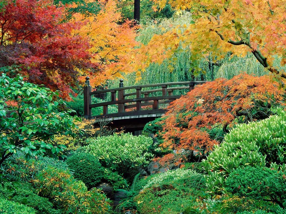 A Love Of Japanese Gardens Portland Japanese Garden Japanese Garden Japanese Garden Style