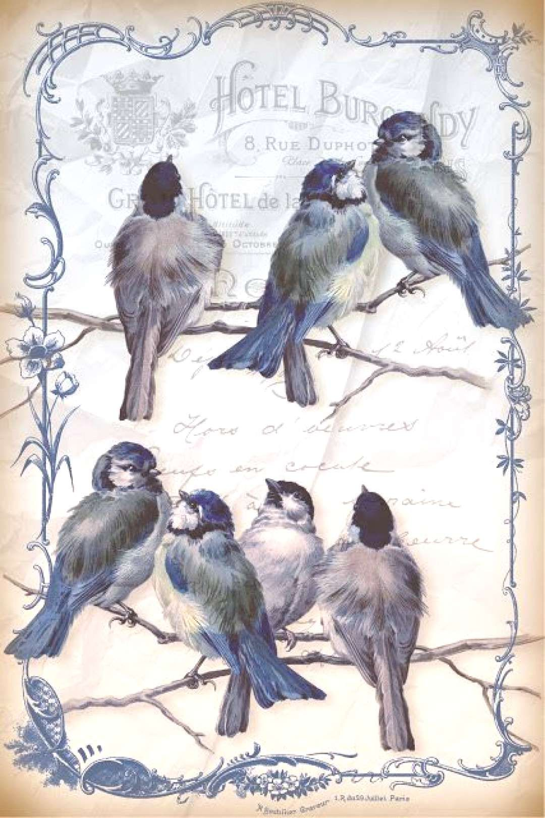 birds Bird journaling cards bird ephemera black and white altered index cards journaling cards Bird embellishments