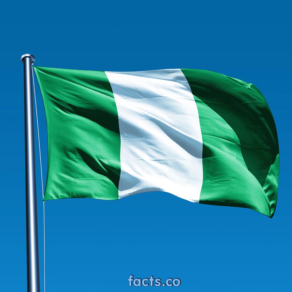 Igeria Flag Bing Images Nigerian Flag Flag Colors Nigeria Flag