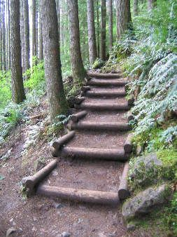 Best Some Nice Crib Steps An Easy Hiking Trail Horse 400 x 300