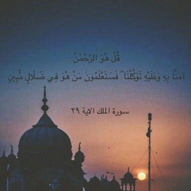Surah Al MULK.  QURAN