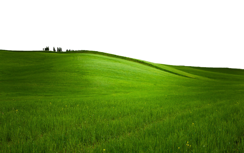 Green Grass Png Use Anywhere Transparent Green Country Grassy Hill Photo