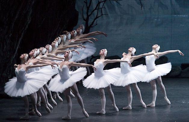 Historia Del Ballet El Lago De Los Cisnes Ballet Beautiful