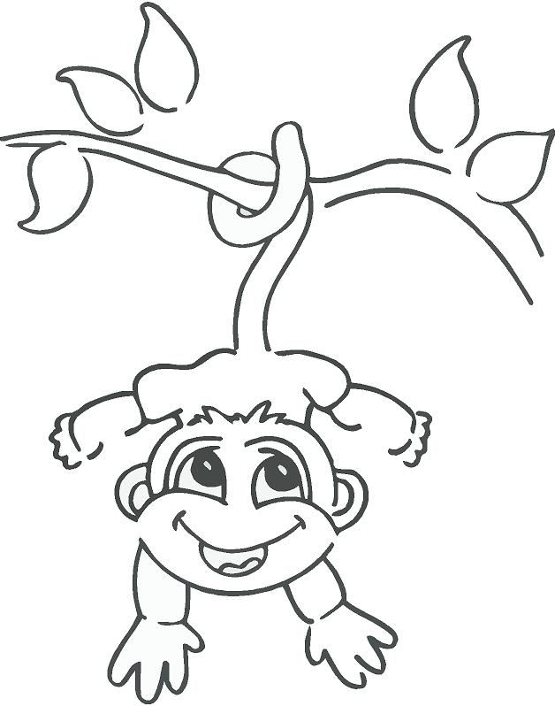 monkeys drawings hanging monkey drawing monkey hanging from tree