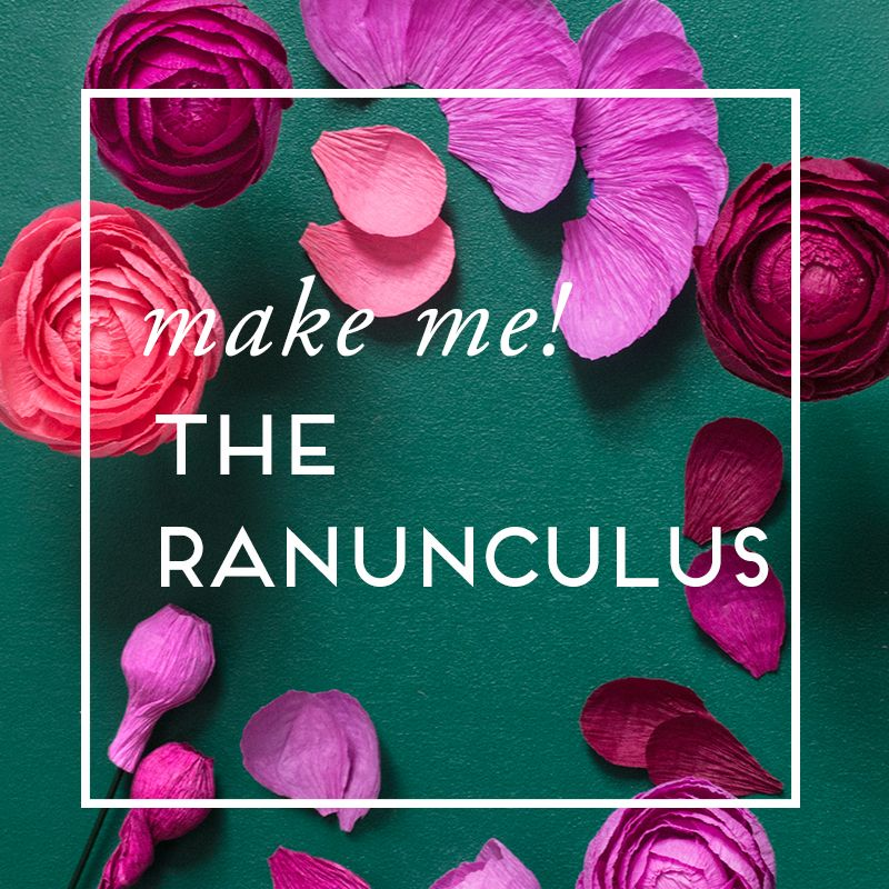 The ranunculus paper flower guide paper flowers pinterest the ranunculus paper flower guide mightylinksfo