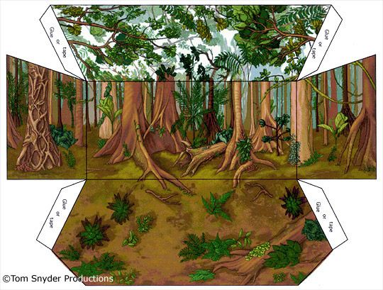graphic relating to Diorama Backgrounds Free Printable titled Rainforest Shoebox Diorama Printables Rainforest biorama