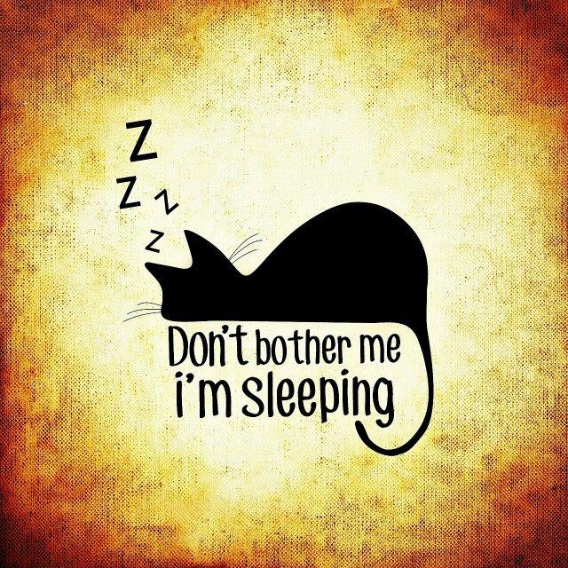 Duerme lo suficiente!!!  El sueño es para que el cuerpo se repare y se llene de energía que lo conserve sano y joven. Cuando dormimos menos no alcanza su meta y por eso nos levantamos con células viejas. ¡Ah!, pero si dormimos más de la cuenta, entonces perdemos músculos y se nos afloja la piel. Las horas mas rejuvenecedoras son: dormir antes de las 10:30 pm y despertar antes de 8:00 am.  #DulcesSueños #Worksante #VidaSaludableWs