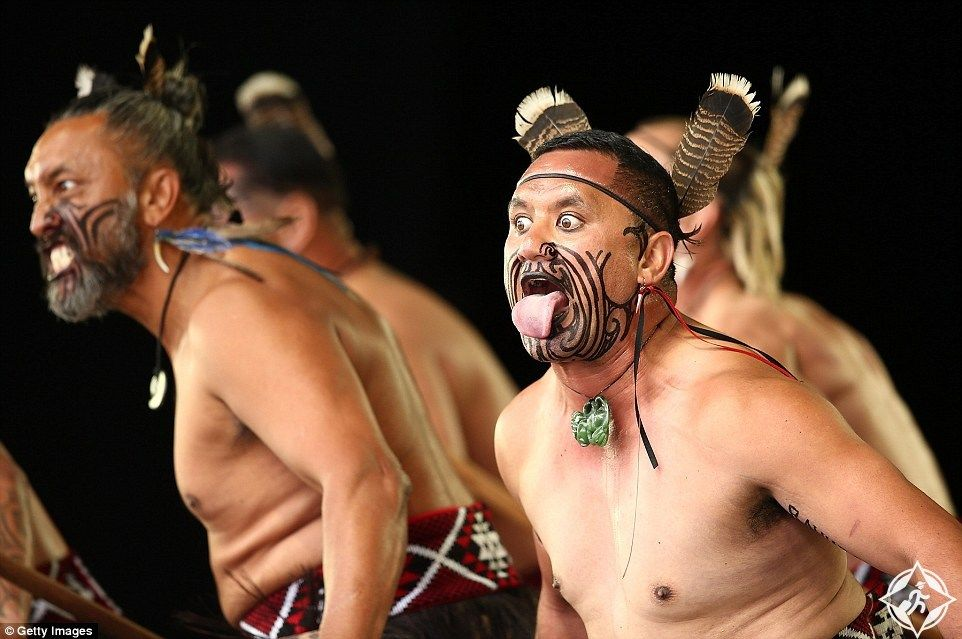 Maori Culture Maori Maori Tribe