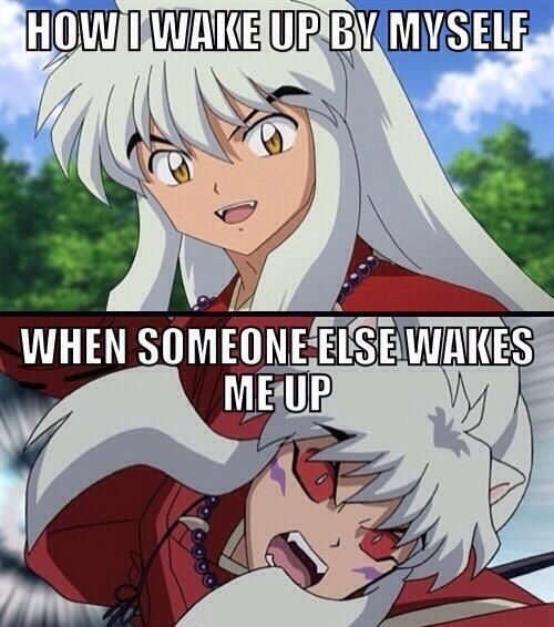 Puppy Inuyasha: This Is A Sequel To ~In Love With A Puppy Half-Demon