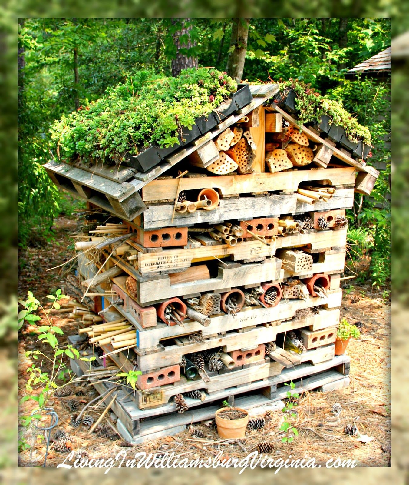 Living In Williamsburg, Virginia: Pollinator Palace, Williamsburg Botanical  Gardens, Williamsburg, Virginia