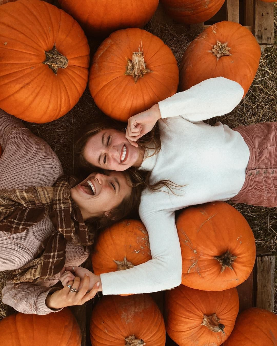 "natalie on Instagram: ""oh my gourd???? it's pretty chilly????"" #pumpkinpatch"