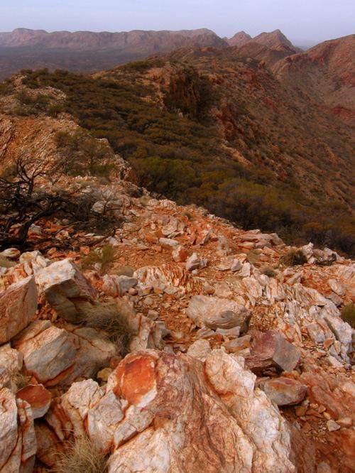 Desert rock, Larapinta