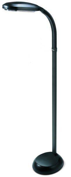 0 000373 Gt Natural Spectrum Light Floor Lamp Graphite Full