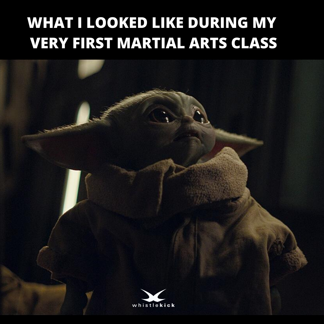 Do you still remember your first Martial Arts class