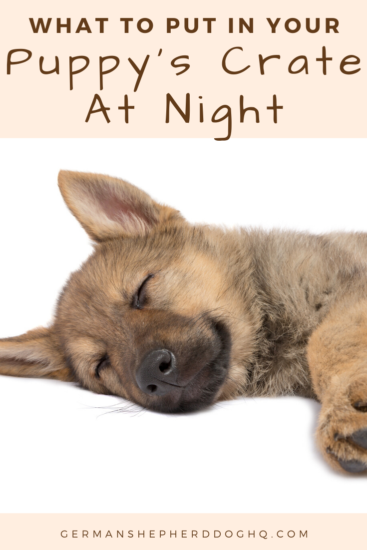 What To Put In A Puppy Crate At Night German Shepherd Dog Hq Puppy Crate Crate Training Puppy Crate Training Dog