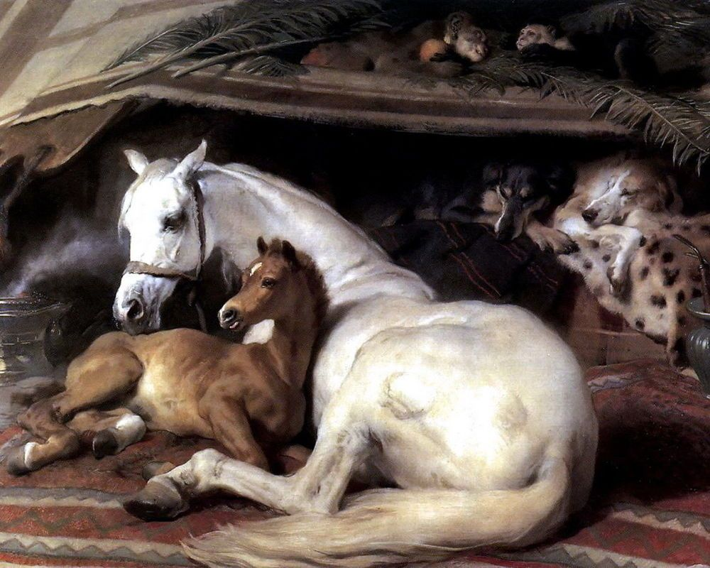 The Arab Tent with horse and baby Foal dogs Oil painting Sir Edwin Landseer
