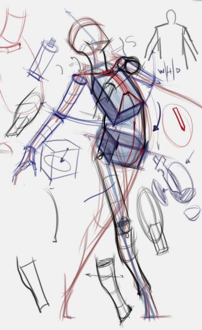 Figuredrawingfonews Drawing 4 Dummies Pinterest Skeletons