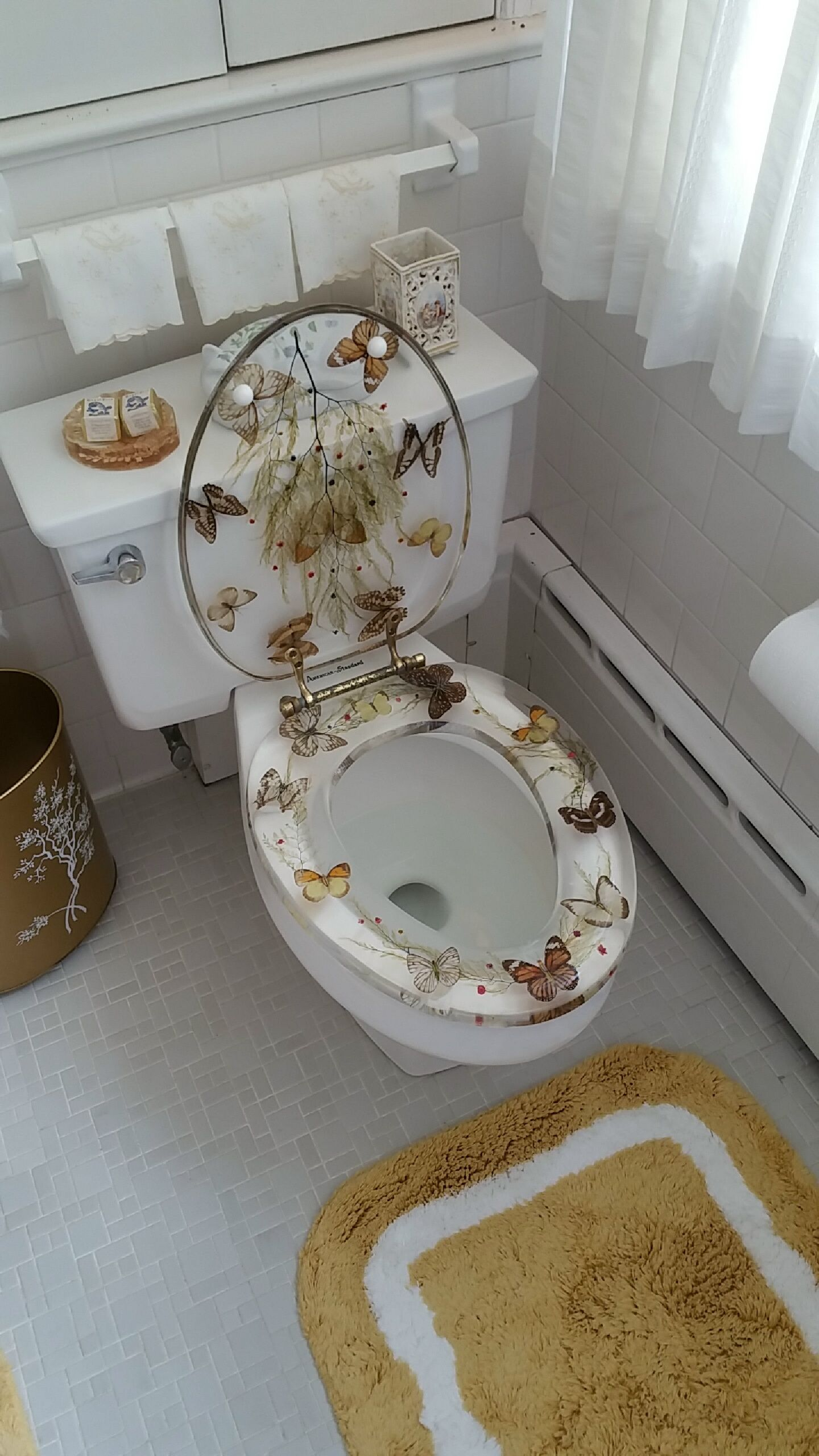 This Bathroom Has Transparent Butterfly Toilet Seats In