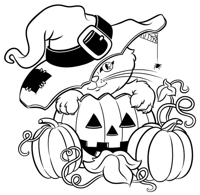 Funny halloween Witch and cat coloring page for kids, printable ... | 622x638