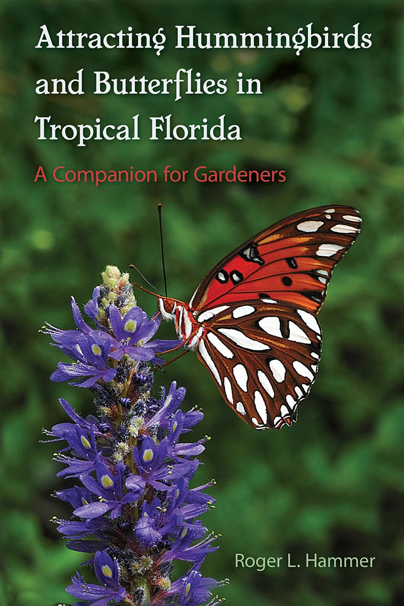 plants that butterflies and hummingbirds like in southern ...