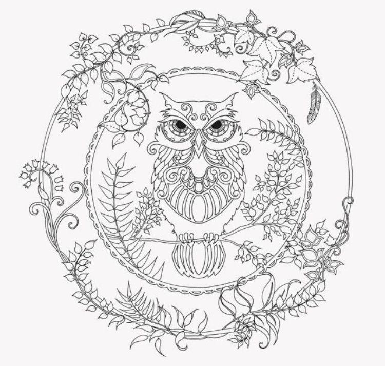 mandalas-herbst-ausdrucken-ausmalen-kinder-malvorlage-eule-uhu-wald ...