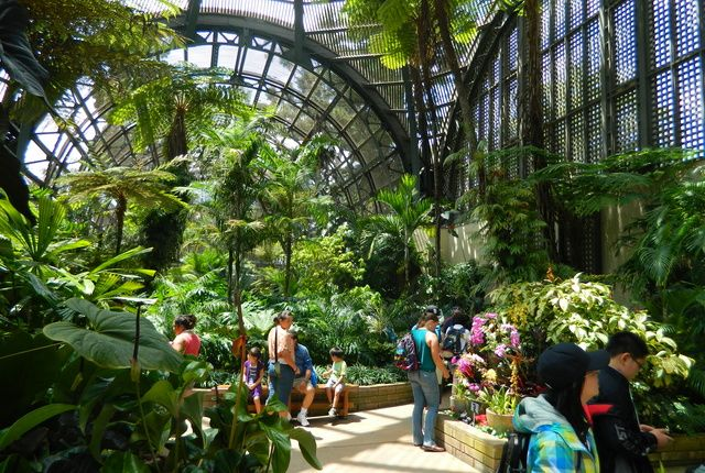 Visit The Balboa Park Gardens Conservatory In San Diego California South Pinterest