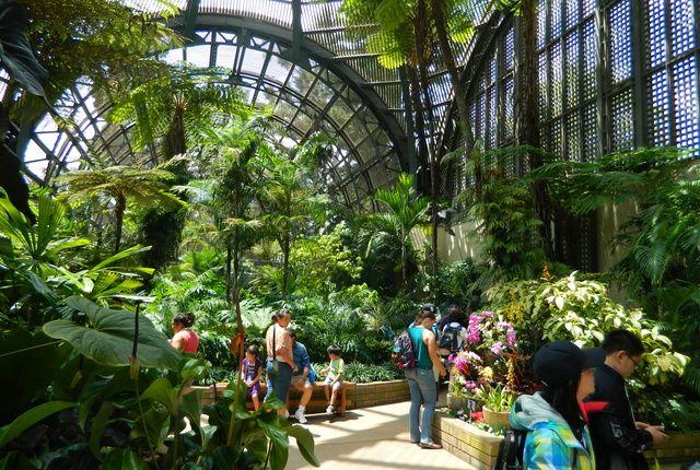 b7850a10eeb1e8e4c54e7a1e6530af4c - San Diego Botanical Gardens Free Tuesday