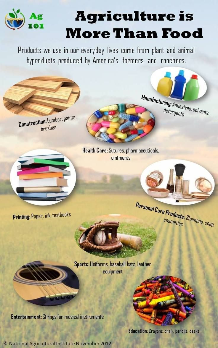 Agriculture is more than foodinfographic Ag Day