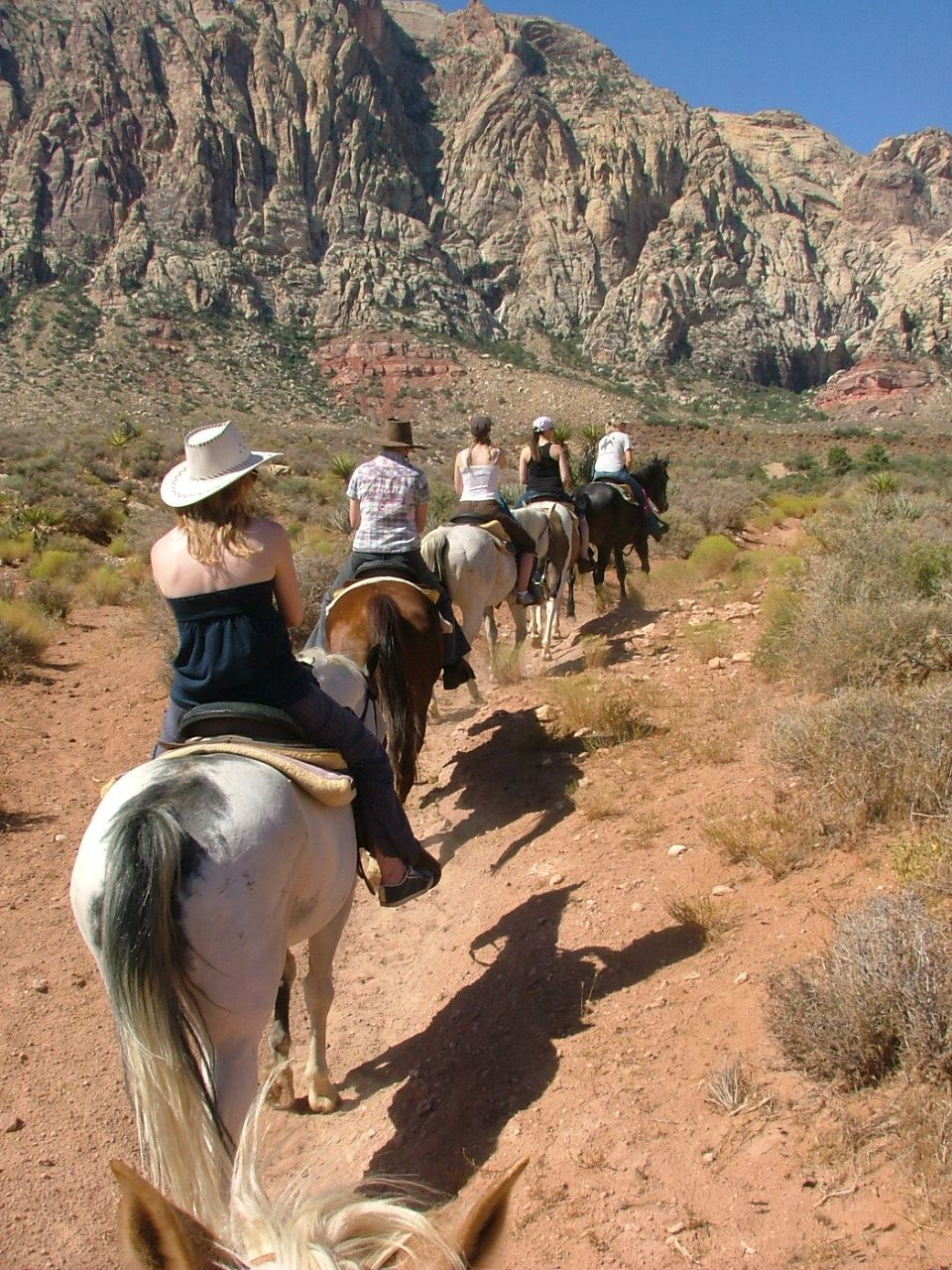 Image result for bonnie springs trail rides