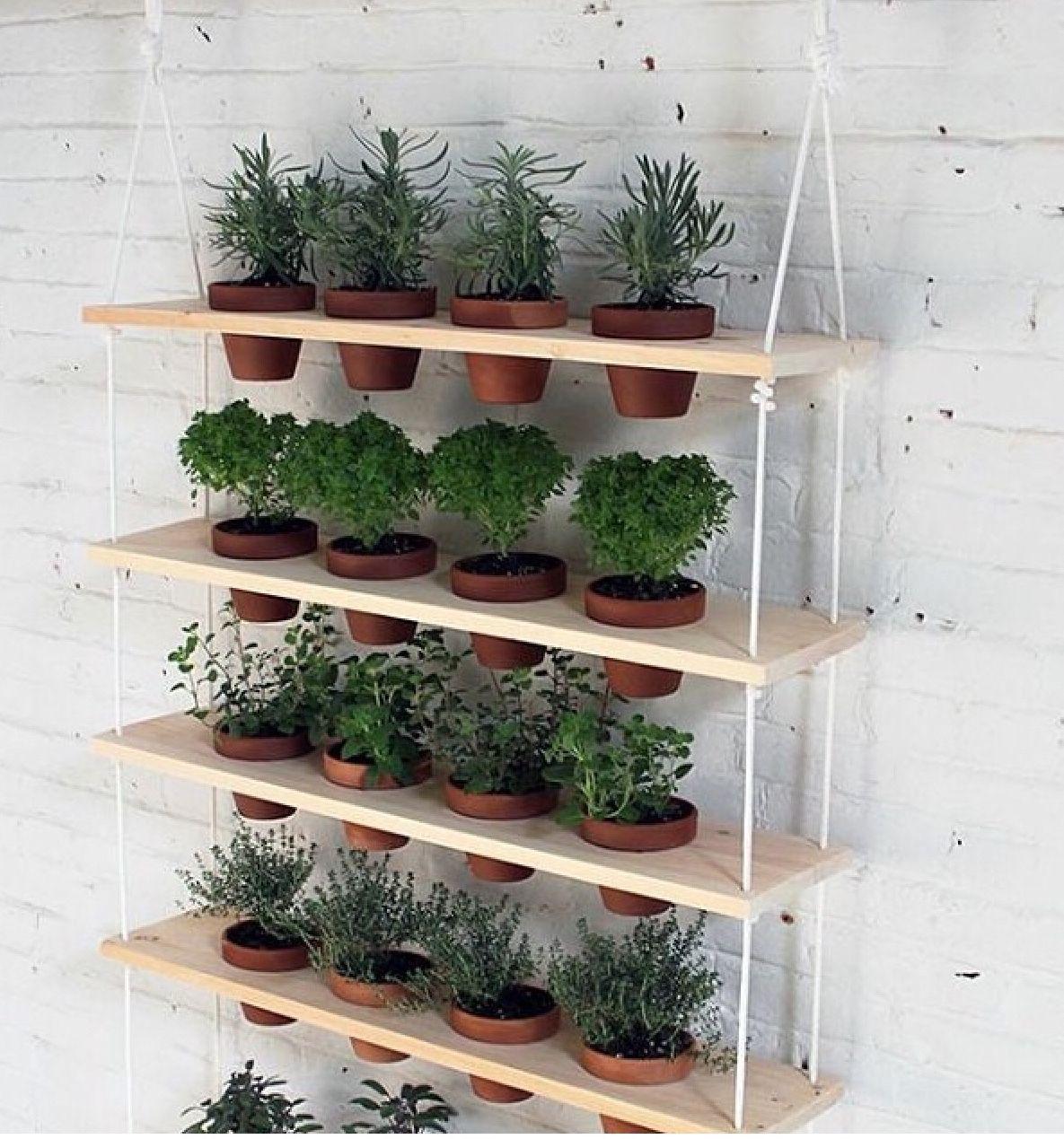 Simple! Vertical garden diy, Indoor herb garden, Hanging