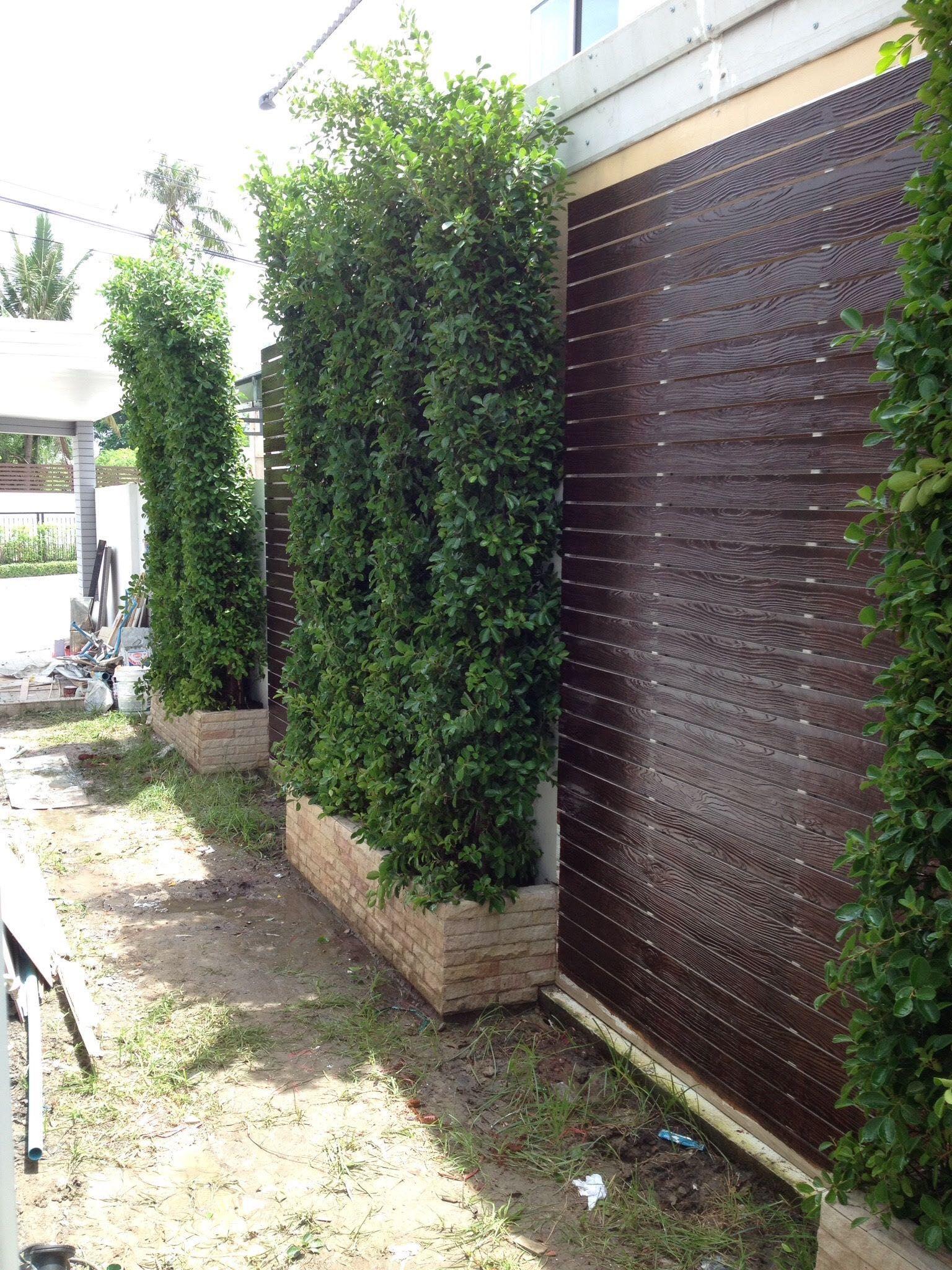 Google jardin pinterest macetas for Jardineria al aire libre casa pendiente