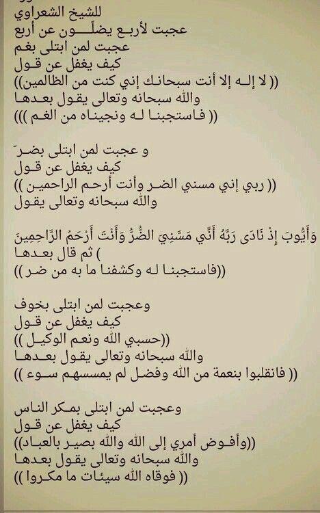للشيخ الشعراوي Islamic Phrases Quran Quotes Words