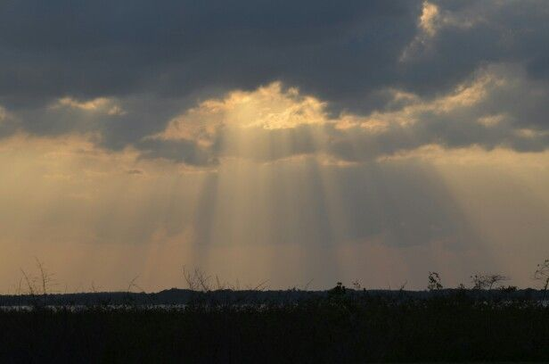 Rays from Heaven ( copyrited by Linda Edwards).