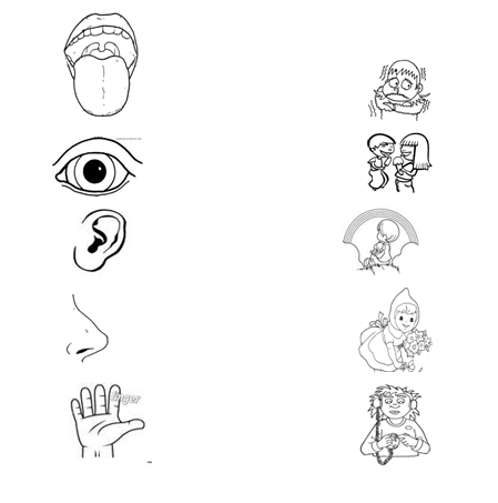 Organos de los sentidos para colorear para niños - Imagui | los ...