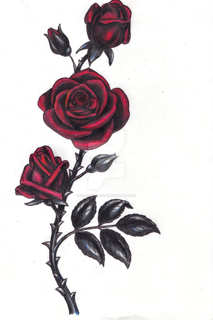 Gothic Rose By Dragonwings13 Rose Vine Tattoos Gothic Rose Rose Drawing Tattoo