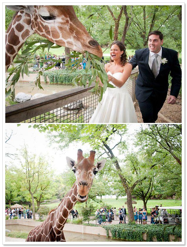 Fall Philadelphia Zoo Wedding