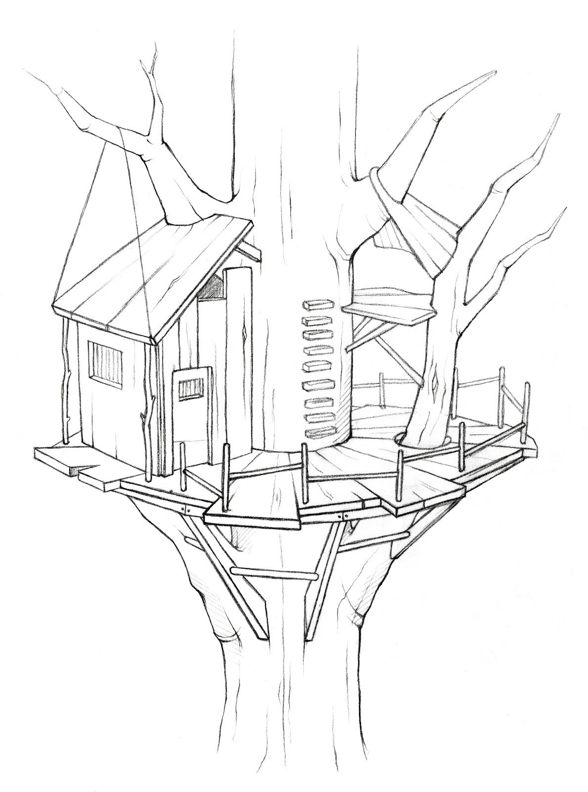 Tree House Coloring Pages More Images Of Tree House