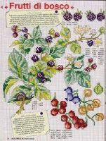 Gallery.ru / Фото #86 - EnciclopEdia Italiana Frutas e verduras - natalytretyak