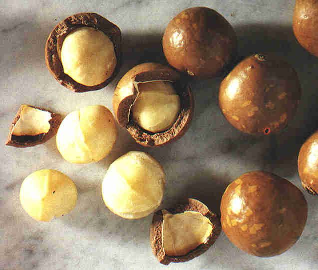 b78986e07c0a4ab9a76eb16e529b24cb - How To Get Macadamia Nuts Out Of Their Shells