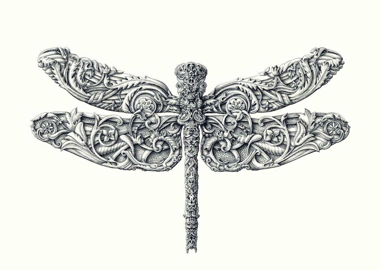 """Dragonfly"" Print —> http://alexkonahinart.bigcartel.com/product/dragonfly-print"